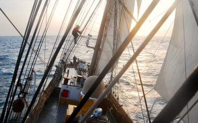 Quest for change – We visited a sailship on a mission.
